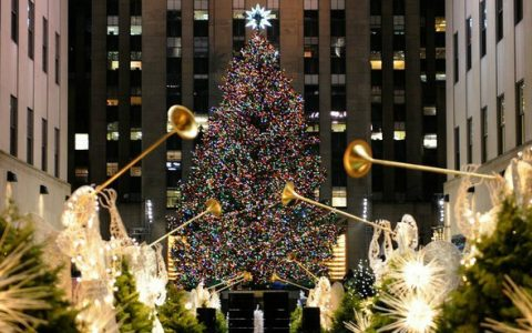 The Most Amazing Christmas Tree's You'll See This year The Most Amazing Christmas Tree's You'll See This Year The Most Amazing Christmas Tree's You'll See This Year rockefeller center new york1 480x300