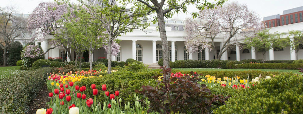 10 Things You Never Knew About the Presidential Gardens Presidential Gardens 10 Things You Never Knew About the Presidential Gardens Feature 7
