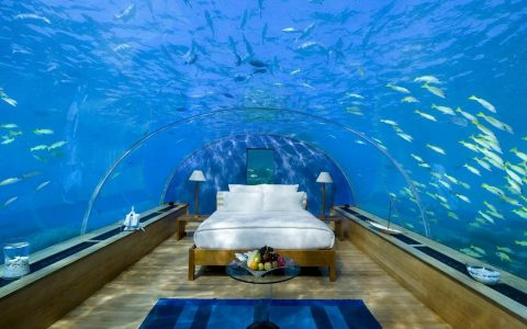 Underwater Bedroom Is The Ultimate Luxury Experience in Maldives ft luxury experience Underwater Bedroom Is The Ultimate Luxury Experience in Maldives Underwater Bedroom Is The Ultimate Luxury Experience in Maldives ft 480x300