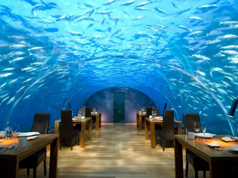 The Most Luxurious Restaurants Around The World luxurious restaurants The Most Luxurious Restaurants Around The World Imagem1 11