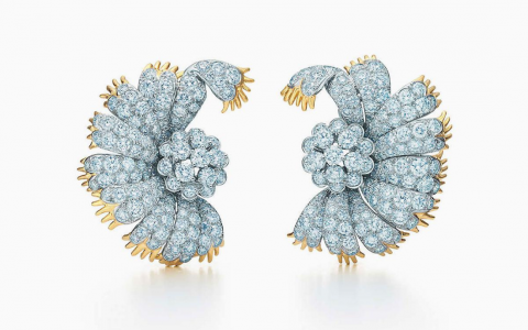 Tiffany & Co's New High Jewelry Collection Honors Natural World tiffany & co Tiffany & Co.'s New High Jewelry Collection Honors Natural World FT DLE 9 480x300